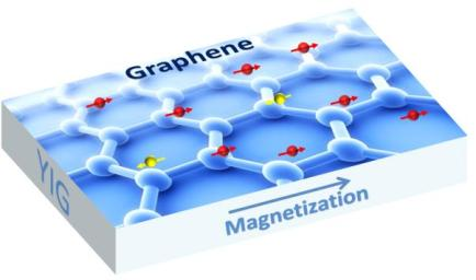 Graphene is a one-atom thick sheet of carbon atoms arranged in a hexagonal lattice. UC Riverside physicists have found a way to induce magnetism in graphene while also preserving graphene's electronic properties. Image credit: Shi Lab, UC Riverside.